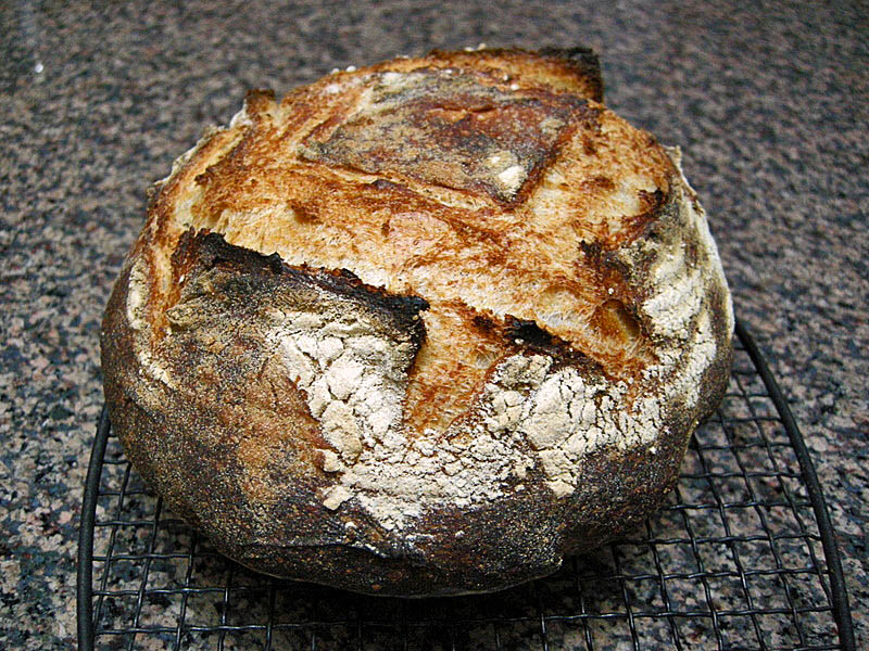 TARTINE BREAD: BASIC COUNTRY LOAF | Bewitching Kitchen