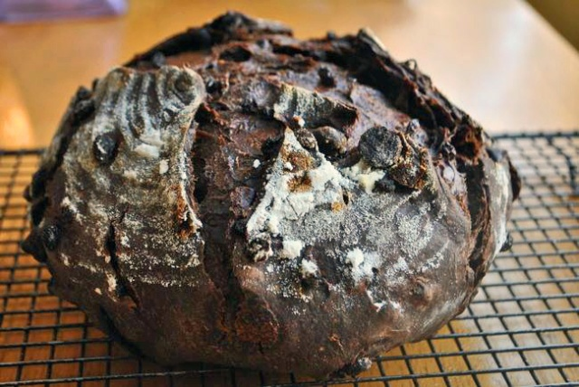 Chocolate Currant Sourdough