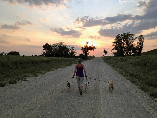 sunsetwalk1