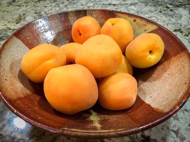 Apricots Bowl
