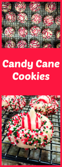 Candy Cane Cookies from Bewitching Kitchen