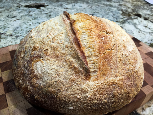 best sourdough boule