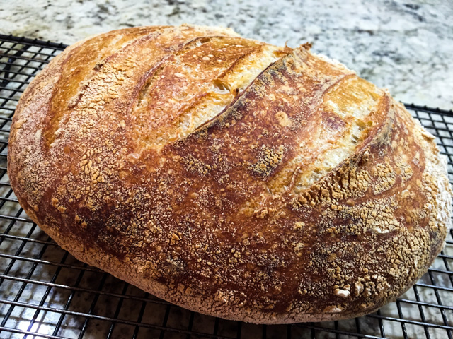 Best Sourdough2