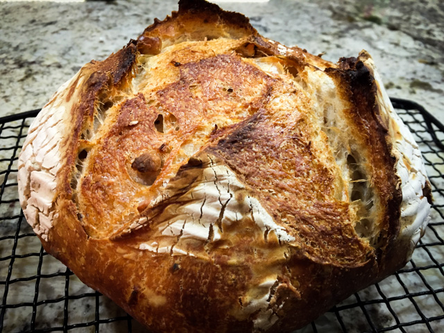 Hazelnut Blue Cheese Sourdough