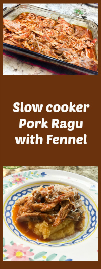 slow-cooker-pork-ragu-with-fennel-from-bewitching-kitchen