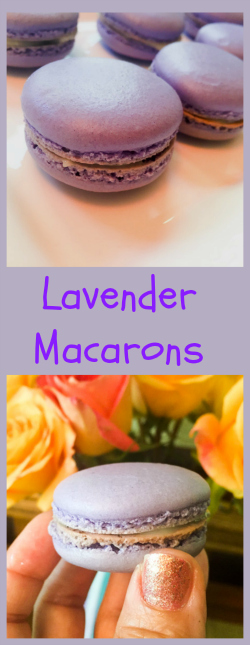 lavender-macarons-from-bewitching-kitchen
